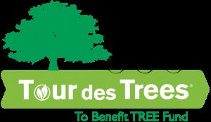 TDT-Logo-300x173